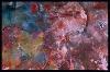 PetrifiedForest-macro_2